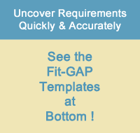 Fit-GAP Analysis template